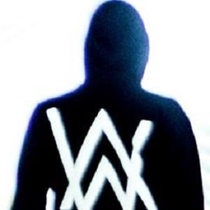 Alan Walker picture