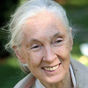 Jane Goodall picture