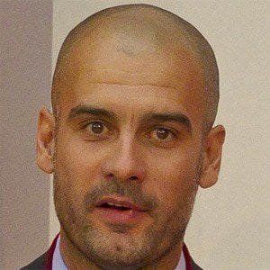 Pep Guardiola picture